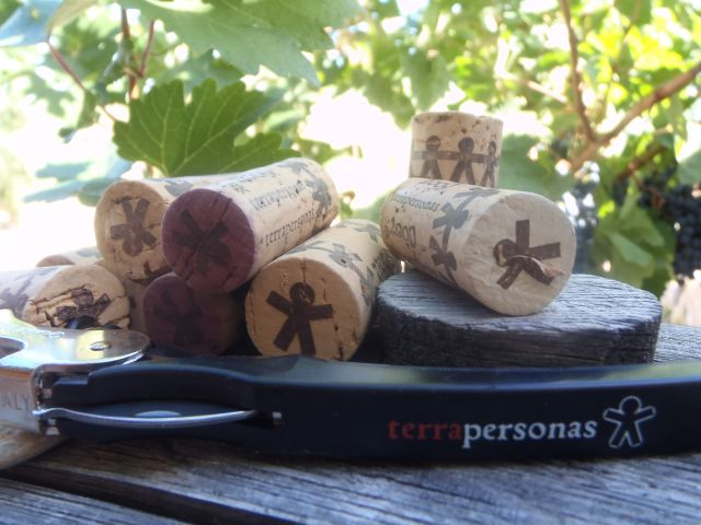 Export terra Personas wines and extra virgin olive oils 100 % arbequina dop siurana